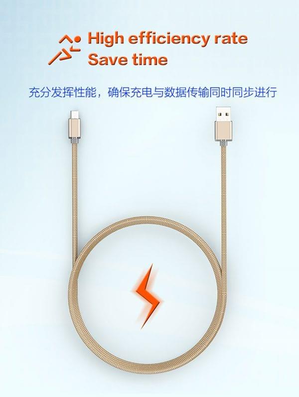کابل تبدیل USB به microUSB الدینیو مدل LS17 به طول 2 متر